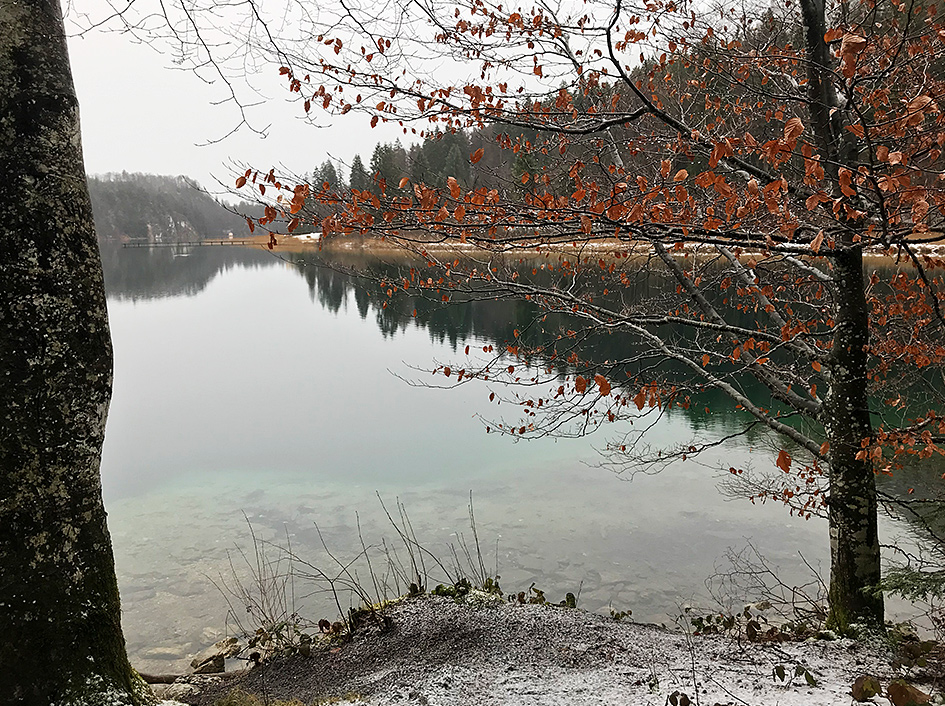 Alpsee in winter