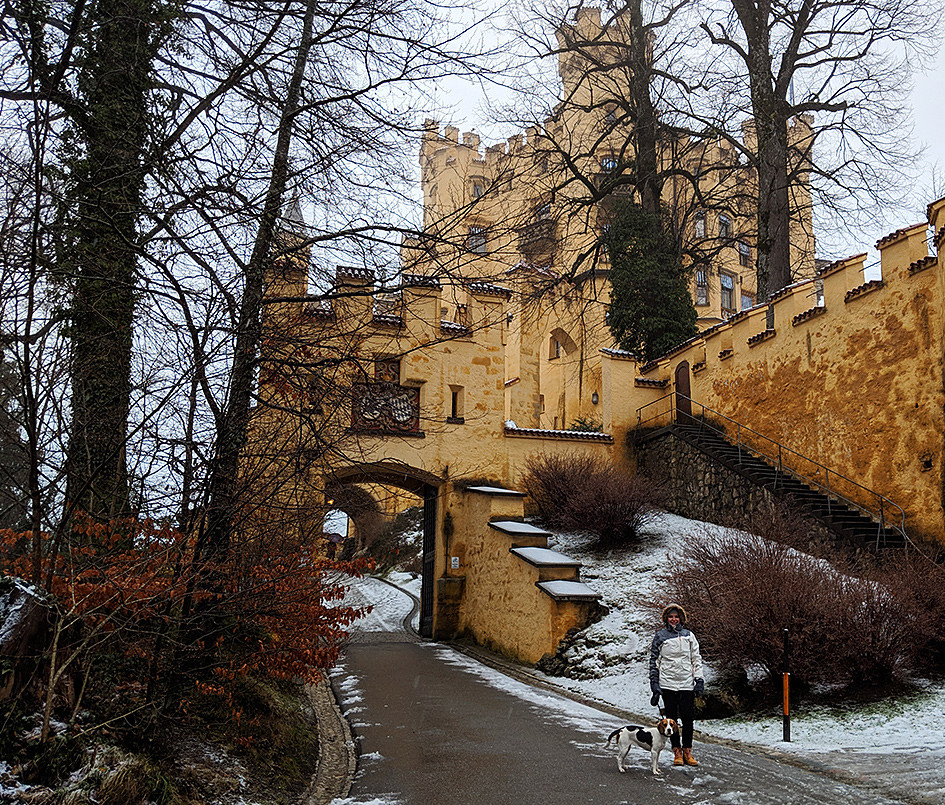 Hohenschwangau in winter