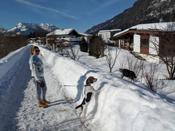 visit ski resort in Austria with a dog