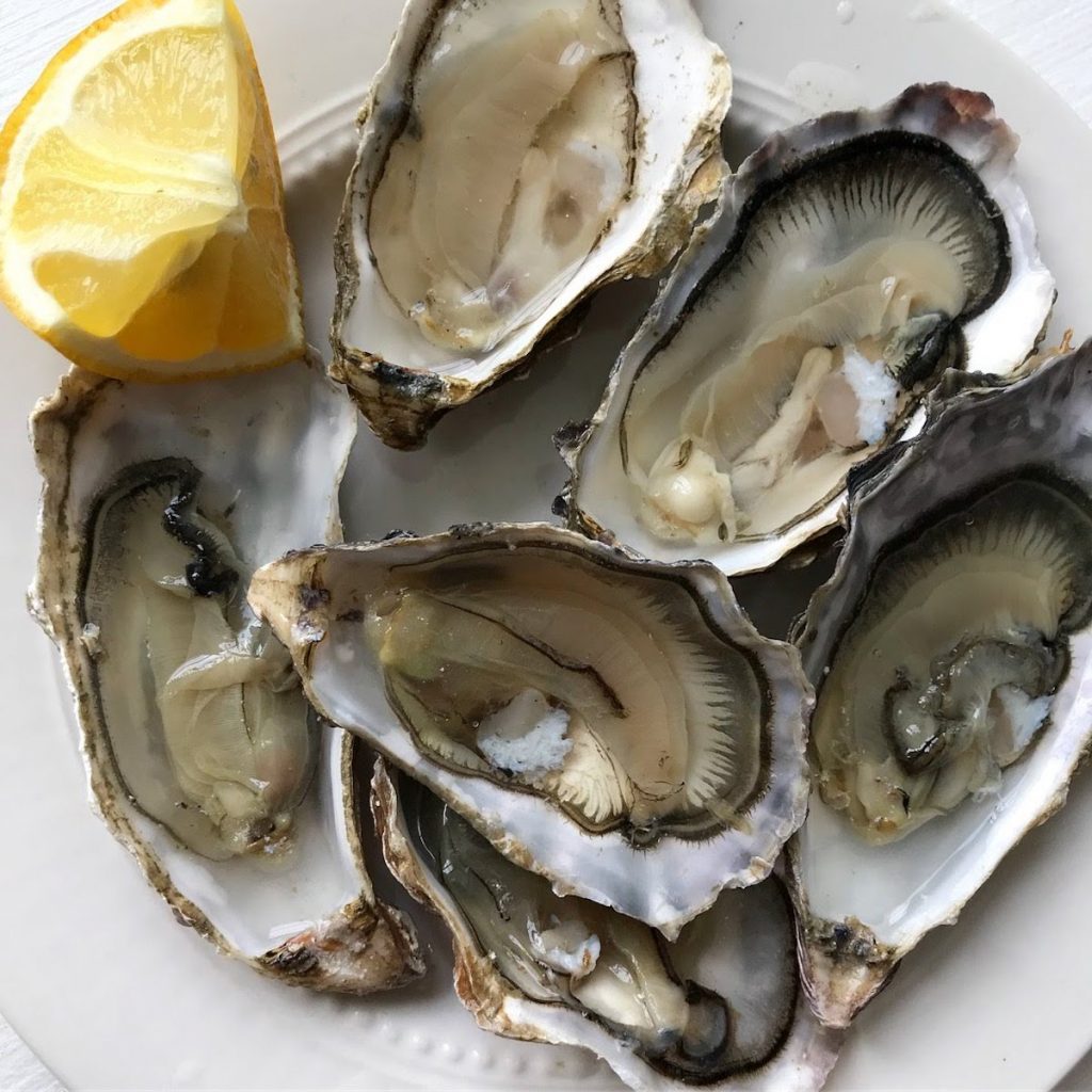 Oysters Brittany