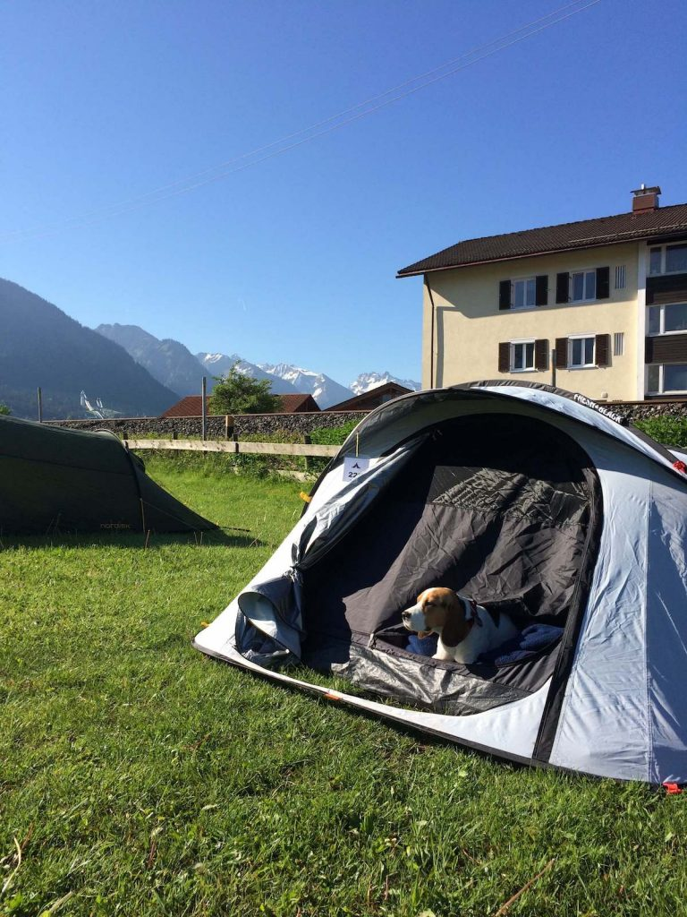 camping with a dog in europe