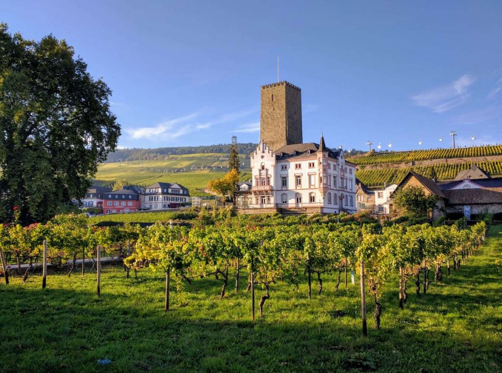 things to do in Rüdesheim