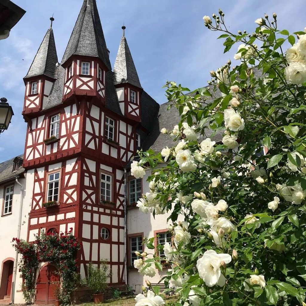 what to do in Rüdesheim