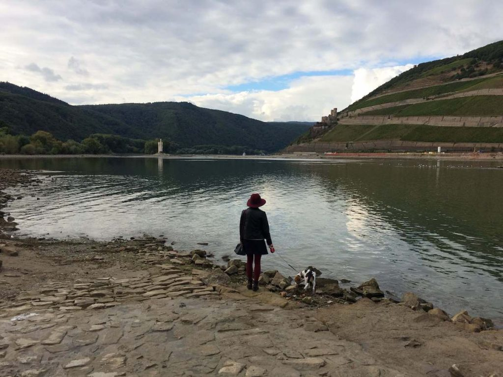 The Rhine near Bingen