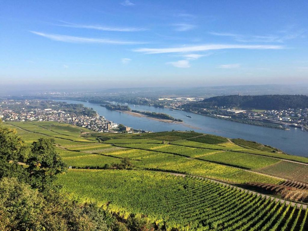 The Rhine valley near Rüdesheim