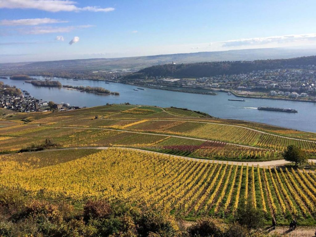Fall in Rüdesheim