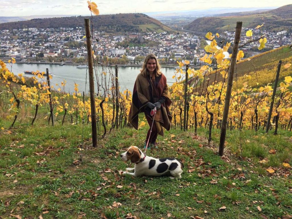 Hiking near Rüdesheim